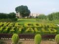 Garden-Indian Institute of Information Technology - IIIT Allahabad